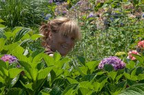 Sandy's attention to detail is unparalled. She will make your gardens truly beautiful.