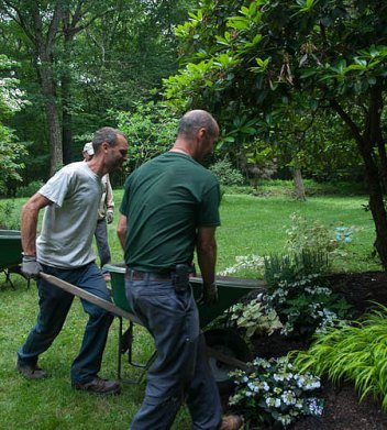 Careful attention is brought to every job. Shrubs are dug and planted with utmost care.
