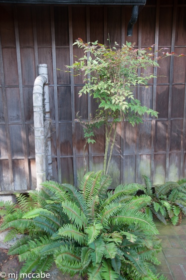 japanese-002
