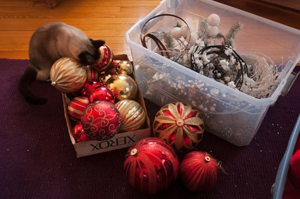 The final cleanup of holiday decorations, when unpacked next year they will look fresh and new.