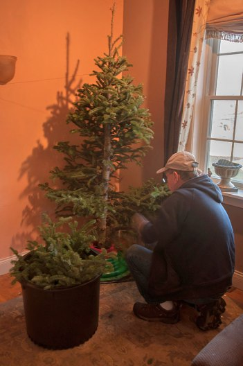 Avoid dragging the needles through the house--cut the branches up in the house.
