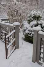A snow-covered boxwood defines an entrance to the garden in the depths of winter