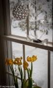 Wabi Sabi represents the imperfect and transience — withered tulips lean into a window overlooking a Winter landscape