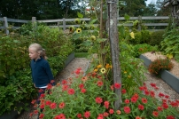 Children are natural explorers--being surrounded by plants especially at eye level makes working in a garden very exciting