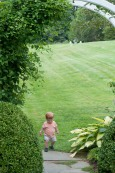 Toddlers love to explore wide open garden spaces
